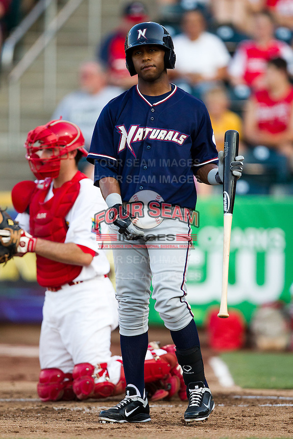 Rey Navarro (8) of the Northwest Arkansas Naturals stands in the batters box during a game against the Springfield Cardinals at Hammons Field on August 1, 2011 in Springfield, Missouri. Springfield defeated Northwest Arkansas 7-1. (David Welker / Four Seam Images)