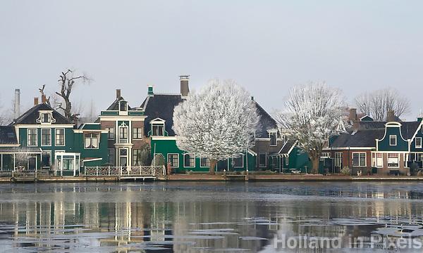 Nederland Zaandijk 2017-01-18 .  Huizen aan de Zaan. Gortershoek. Rijp op de bomen. Foto Berlinda van Dam / Hollandse Hoogte