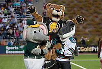 Oakland Athletics' Stomper (left) and San Jose Sharks' S.J. Sharkie (right) lift up MVP FC Gold Pride's Pounce after the half time mascot game. FC Gold Pride tied the Washington Freedom 0-0 at Pioneer Stadium in Hayward, California on August 14th, 2010.