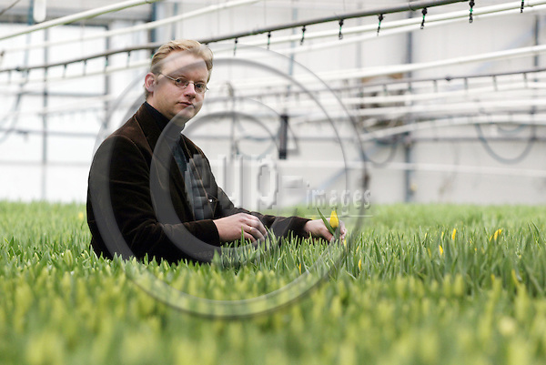 HILLEGOM - NETHERLANDS - 18 MARCH 2003-- Nord Lommerse, Dutch exporter of flower Bulb. -- Erik LOMMERSE is the third generation running the mainly Tulip bulb exporting company here at his tulip grower friends greenhouse .-- PHOTO:  EUP-IMAGES.COM / JUHA ROININEN