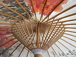 Meinong, Taiwan -- Structure (ribs and stretchers) holding up a Chinese oil paper umbrella.
