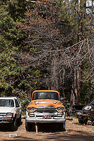 Idyllwild, CA, 2013. Images are available for editorial licensing, either directly or through Gallery Stock. Some images are available for commercial licensing. Please contact lisa@lisacorsonphotography.com for more information.