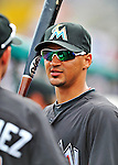 13 March 2012: Miami Marlins infielder Jeff Dominguez stands in the dugout during a Spring Training game against the Atlanta Braves at Roger Dean Stadium in Jupiter, Florida. The two teams battled to a 2-2 tie playing 10 innings of Grapefruit League action. Mandatory Credit: Ed Wolfstein Photo