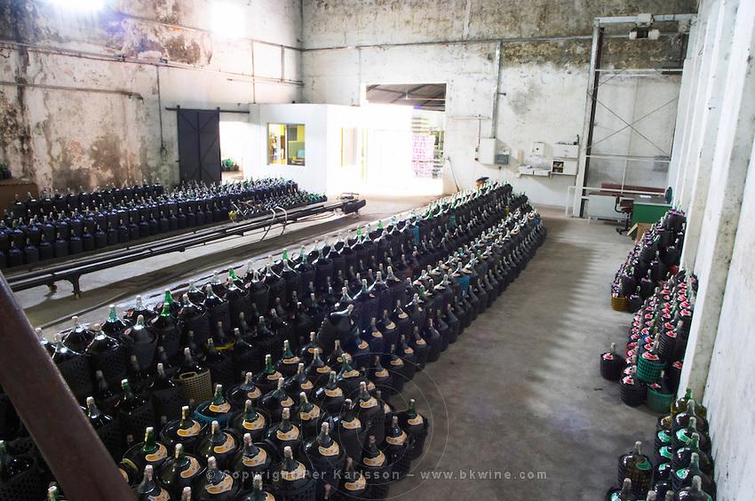 The storage room for table wines Bodega Castillo Viejo Winery, Las Piedras, Canelones, Uruguay, South America