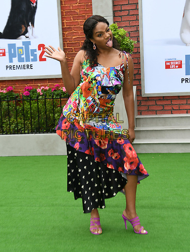 """02 June 2019 - Westwood, California - Tiffany Haddish. """"The Secret Lives of Pets 2"""" Los Angeles Premiere held at Regency Village Theater. <br /> CAP/ADM/BT<br /> ©BT/ADM/Capital Pictures"""
