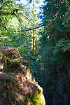 Located near North Vancouver, B.C. the Lynn Canyon Suspension Bridge hangs 20 stories above Lynn Creek, offering spectacular views of Lynn Canyon.