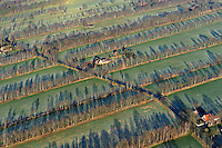 Asselermoor: EUROPA, DEUTSCHLAND, NIEDERSACHSEN, (EUROPE, GERMANY), 26.12.2008:  Asseler Moor westlich Stade, Knick, Baum, Reihe, Landschaft, Moor, Feld, Acker, Luftbild, Luftansicht, Air, Aufwind-Luftbilder..c o p y r i g h t : A U F W I N D - L U F T B I L D E R . de.G e r t r u d - B a e u m e r - S t i e g 1 0 2, .2 1 0 3 5 H a m b u r g , G e r m a n y.P h o n e + 4 9 (0) 1 7 1 - 6 8 6 6 0 6 9 .E m a i l H w e i 1 @ a o l . c o m.w w w . a u f w i n d - l u f t b i l d e r . d e.K o n t o : P o s t b a n k H a m b u r g .B l z : 2 0 0 1 0 0 2 0 .K o n t o : 5 8 3 6 5 7 2 0 9.V e r o e f f e n t l i c h u n g  n u r  m i t  H o n o r a r  n a c h M F M, N a m e n s n e n n u n g  u n d B e l e g e x e m p l a r !.