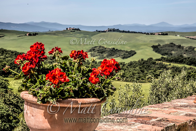 Geraniums with valley of wheat in the background. (Photo by Travel Photographer Matt Considine)