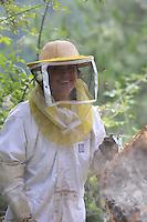 Annette Glokek, in Beaumont in Ardeche, opens the hives to inspect her apiary set up to produce chestnut flower honey. ///Annette Glokek, à Beaumont en Ardèche ouvre des ruches pour inspecter son rucher installé pour produire du miel de châtaignier.