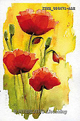 Isabella, FLOWERS, BLUMEN, FLORES, paintings+++++,ITKE026471-ALE,#f# ,everyday