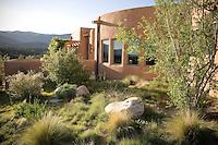 Naturalistic meadow in sunny New Mexico xeriscape, dry landscape, drought tolerant garden