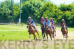 Castleisland Races................................................................................ ........