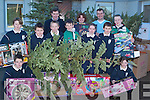 RECYCLE: Pupils from Spa National School, who with the help of their teachers, recycled all the Christmas Tree's and packages from their parents and neighbours homes on Friday. Front l-r: James O'Connor and Albhe Foley. Middle l-r: Fionn Griffin, Max Tyrell, Raymond Kelly, Cian Sayers, Aoife Crowley, Fiachra Griffin and Claire Brennan. Back l-r: Tom Crowley (Principal), Geraldine Behan and Peter Lenihan (Teachers).   Copyright Kerry's Eye 2008
