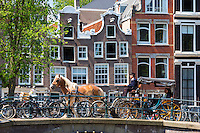 Tourists in horse drawn carriage cross bridge at Herengracht / Singel in Jordaan District, Amsterdam