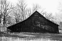 Old Barn on Triangle Road, Yosemite   35mm image on Ilford Delta 100 film