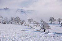 Snow and mist, Whitewell Lancashire.
