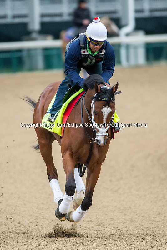 APRIL 26, 2015: Danzig Moon, trained by Mark Casse exercises in preparation for the 141st Kentucky Derby at Churchill Downs in Louisville, KY. Jon Durr/ESW/Cal Sport Media