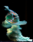Flamenco Festival London Sadlers Wells Theatre UK Ballet Flamenco de Andalucia performing Metafora 21.03.2013