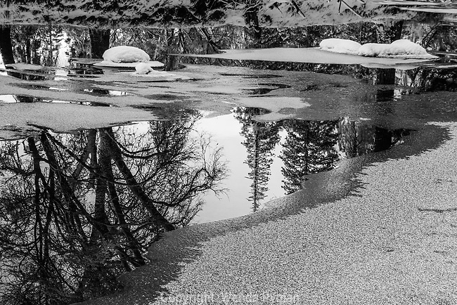 Dramatic reflections in the Merced River in the early morning. Snow covered boulders in the river, reflections of trees.