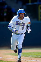 Eric Filia #4 of the UCLA Bruins runs the bases against the Oklahoma Sooners at Jackie Robinson Stadium on March 9, 2013 in Los Angeles, California. (Larry Goren/Four Seam Images)
