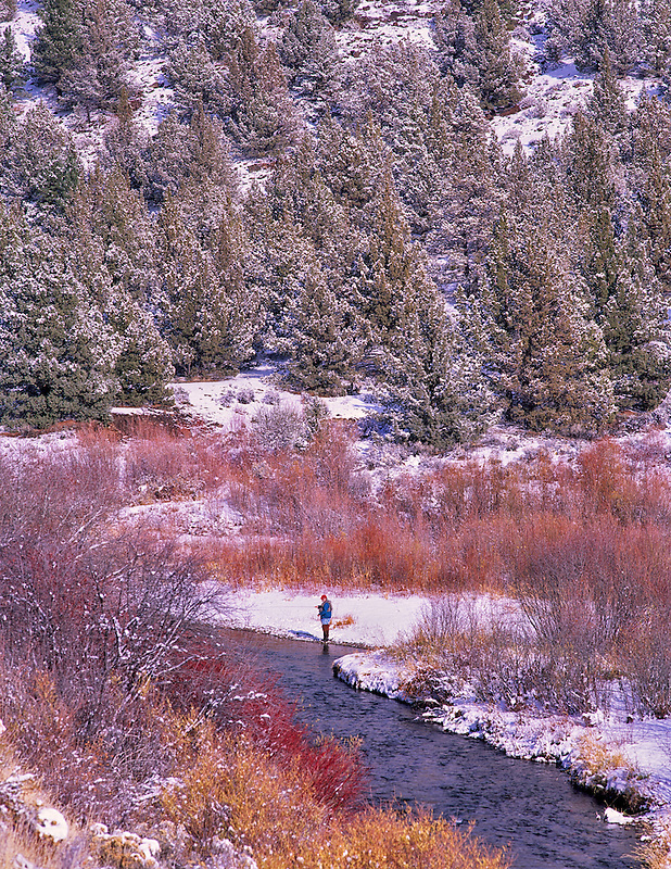 Fly fisherman fishing in snow with some fall color. Chewaucan River, Oregon.