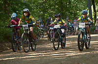 NWA Democrat-Gazette/BEN GOFF @NWABENGOFF<br /> Junior boys start their race Sunday, June 11, 2017, during the Battle for Townsend's Ridge mountain bike race at Hobbs State Park - Conservation Area near Rogers. The cross country race, presented by Ozark Off Road Cyclists, is part of the Arkansas Mountain Bike Championship Series. This year entry fees for racers 14 and younger were covered by Ozark Off Road Cyclists.