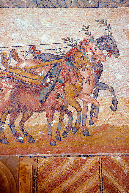 close up of horses pulling a chariot racing at the Circus Maximus Chariot racing at the Circus Maximus from the Palaestra room no 15.. Roman mosaics at the Villa Romana del Casale which containis the richest, largest and most complex collection of Roman mosaics in the world. Constructed  in the first quarter of the 4th century AD. Sicily, Italy. A UNESCO World Heritage Site.