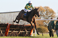 Hogan's Bridge ridden by A P McCoy in jumping action during the Hempton National Hunt Maiden Hurdle