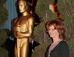 US actress Melissa Leo attends the Academy Awards nominee luncheon in Beverly Hills, California, USA, 02 February 2009. The 81st Academy Awards telecast is scheduled to air on 22 February 2009. .