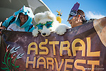 Astral Harvest Submission