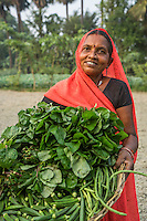 (L-R) Vegetable farmer Macho Devi, a member of a Farmer's Producer Group, carry their vegetables in a basket to the local market in Machahi village, Muzaffarpur, Bihar, India on October 26th, 2016. Non-profit organisation Technoserve works with women vegetable farmers in Muzaffarpur, providing technical support in forward linkage, streamlining their business models and linking them directly to an international market through Electronic Trading Platforms. Photograph by Suzanne Lee for Technoserve