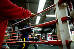 Sparring is an integral part of training for the ring.. Gleason's Gym has continued its long standing tradition in the boxing world as a training ground of competitors by putting 5 fighters into the finals of the 2006 Golden Gloves amateur boxing competition.. An inside look at the last 10 days of training for the 5 young fighters.