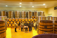 The winery with wooden and stainless steel fermentation vats. It is built in a circular design and made from chestnut wood to fight insects, with a group of visiting Japanese sommeliers, Maison Louis Jadot, Beaune Côte Cote d Or Bourgogne Burgundy Burgundian France French Europe European