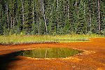 Ochre Beds and Paint Pots, Kootenay National Park, British Columbia, Canada