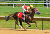 RB Open Fire winning at Delaware Park on 6/18/16