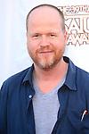 BURBANK - JUN 26: Joss Whedon at the 39th Annual Saturn Awards held at Castaways on June 26, 2013 in Burbank, California
