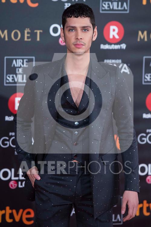 Eduardo Casanova  attends red carpet of Goya Cinema Awards 2018 at Madrid Marriott Auditorium in Madrid , Spain. February 03, 2018. (ALTERPHOTOS/Borja B.Hojas)