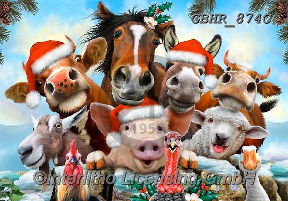 Howard, SELFIES, paintings+++++,GBHR874C,#Selfies#,Christmas,#xa# ,horses
