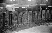 Rural Mailboxes, Sebring, Florida, shot on expired T-Max 400 film with an Argus 100, 35mm film camera, August 2018.  (Photo by Brian Cleary/www.bcpix.com)