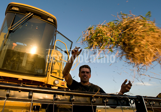 Farmers using  New Holland  combines and tractors made in Brazil, harvest wheat in Balcarce, in the South of Buenos Aires province, Argentina.
