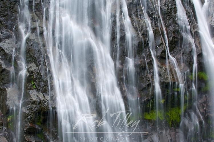 Narada Falls, Mt. Rainer NP, WA, USA