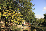 Israel, Jerusalem. Gan Haesrim memorial garden in Beth Hakerem