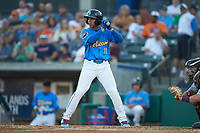 Aramis Ademan (11) of the Myrtle Beach Pelicans at bat against the Winston-Salem Dash at TicketReturn.com Field on May 16, 2019 in Myrtle Beach, South Carolina. The Dash defeated the Pelicans 6-0. (Brian Westerholt/Four Seam Images)