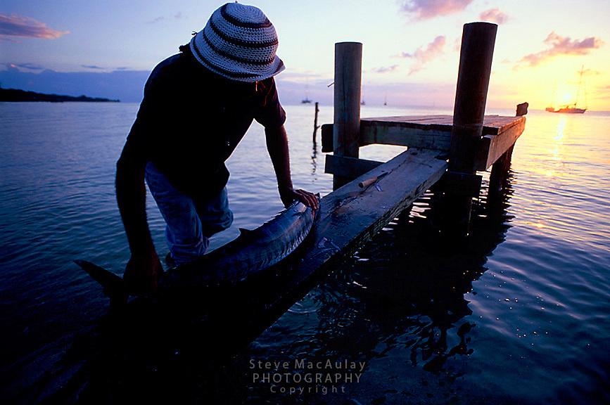 Garifuna man prepares to filet and gut fresh caught barracuda on dock as sun sets, Roatan, Honduras