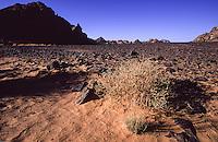 Libya, desert landscape