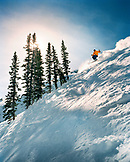 USA, Utah, skier and trees backlight on a run called Blitz, Alta Ski Resort