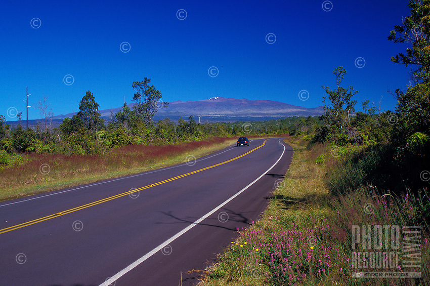 Saddle road with Mauna Kea in the background.