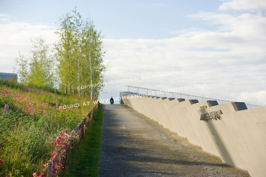 """Looking up an access path toward the overpass that carries the Park over the train tracks and connects the waterfront, or Shore, portion of the Park with the North Meadow, the Grove, and the Valley portions.  At back left are aspens that help provide the gateway from one """"zone"""" to another.  SAM's Olympic Sculpture Park, Seattle, WA."""