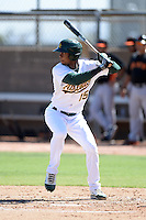 Oakland Athletics outfielder Shawn Duinkerk (15) during an instructional league game against the San Francisco Giants on September 27, 2013 at Papago Park Baseball Complex in Phoenix, Arizona.  (Mike Janes/Four Seam Images)