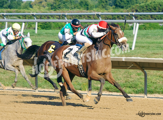 A One winning at Delaware Park on 9/7/15
